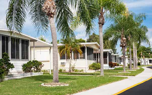 row of mobile homes under palm trees
